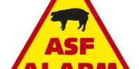 ostrzeżenie o ASF